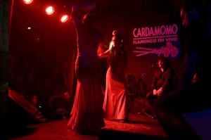 Best restaurants in Madrid. Cardamomo tablao flamenco.