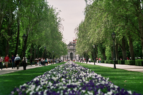 Summer vacation in Madrid